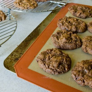 gf-vegan-mesquite-chocolate-chip-pecan-cookies